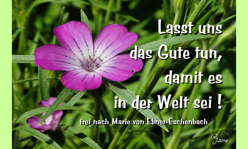 Lasst uns das Gute tun, damit es in der Welt sei! frei nach Marie von Ebner-Eschenbach